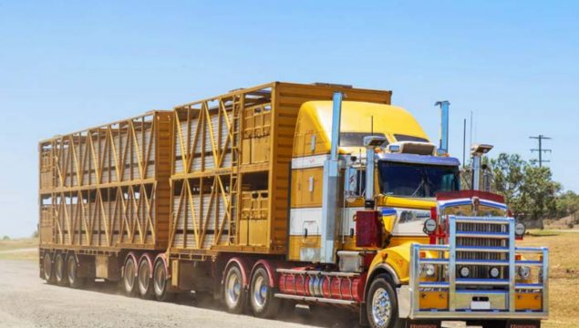 article-truck